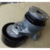 Ролик натяжителя приводного ремня мотор K4M, оригинал, 117509654R